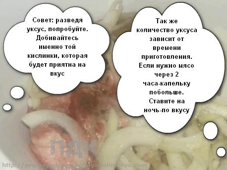 Klassicheskij shashlyk4