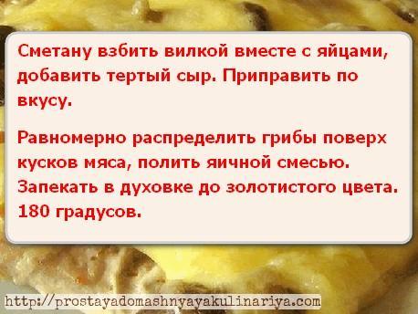 Myaso s gribami i syrom 3