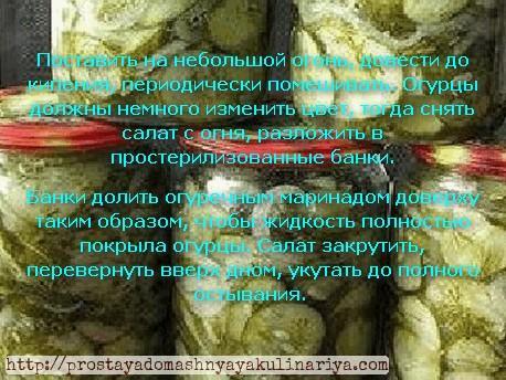 Salat «Zimnij korol» tretij ehtap prigotovleniya domashnego salata